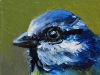 Koolmeesje 5x5 cm (On hold expositie Terra art, small art project