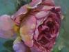 Olieverf-pink-beauty te koop