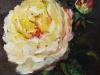 olieverf gele roos II maat 10x10 cm te koop
