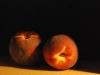 te-schilderen-perziken-joke-klootwijk