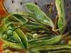 olieverf-boontjes-doppen op Mus paneel, maat 10 x 10 cm
