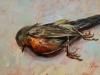 Dood vogeltje, Olieverf maat 18 x 13 cm te koop