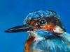 Olieverf IJsvogel met blauw 15x10cm te koop