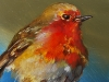 """Olieverf """"roodborstje op tak"""" maat 10 x 10 cm (Verkocht)"""