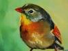 "Vogelportret ""Japanse Nachtegaal"" Verkocht)"