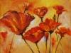 Calif.Poppies olieverf