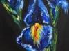 olieverf opdracht IrisII 14x14 cm