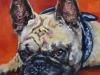 Opdracht schilderij BulleyII opdracht schilderij 20x20x3,8 cm.