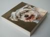 opdracht Snoopy 20x20x3,8 cm