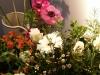 Bloemen stilleven