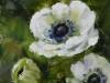 olieverf-drie-witte-anemonen-10x10-cm