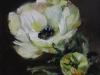 Olieverf witte-anemoon-10-x-10-cm op paneel (Verkocht)