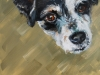 Olieverf Zwart Wit Hondje te koop