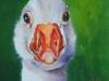 H20 Olieverfschilderij Witte Gans 10 x 10 cm te koop