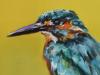 IJsvogel-in-groen-20x10-cm te koop