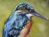 Olieverf-schilderij-IJsvogel-10x15-cm (Verkocht)