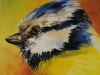 Olieverfschilderij Vogeltje 10 x 10 cm op paneel (VERKOCHT)