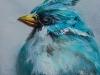 """Olieverf """"Turquoise vogel"""" op paneel maat 10 x 10 cm (Verkocht)"""