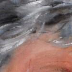 harenschilderen1